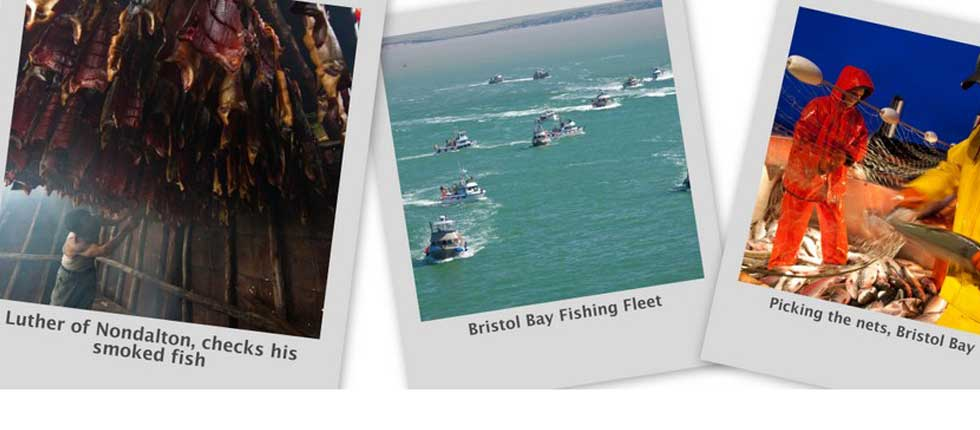 Bristol Bay Fisheries